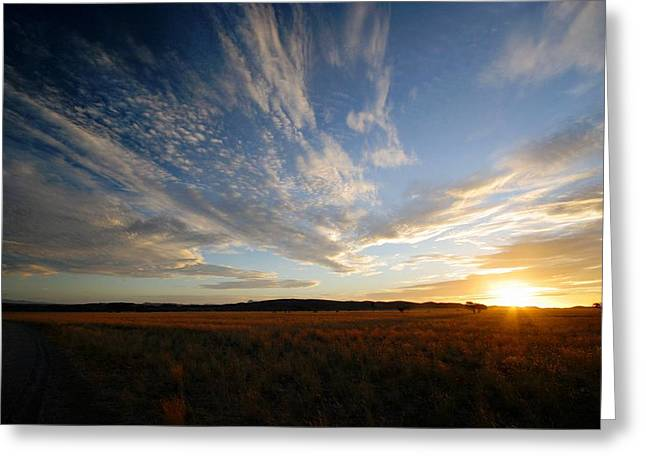 Summer Sunset Over Africa Greeting Card by Riana Van Staden