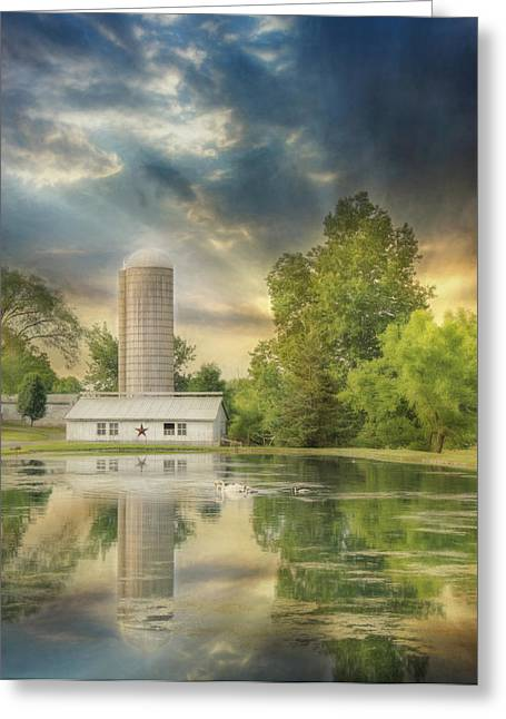 Summer Swans Greeting Card by Lori Deiter