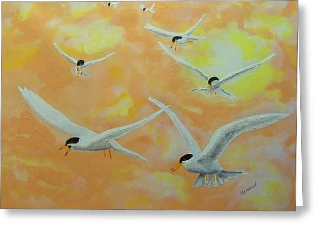 Summer Terns Greeting Card by Rich Mason