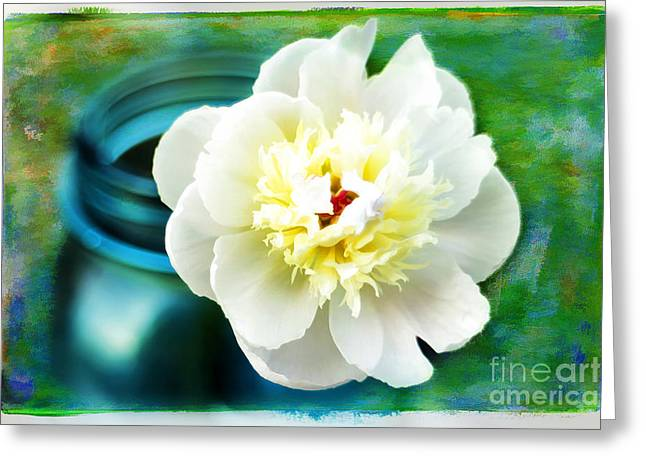 Summer White Greeting Card by Darren Fisher