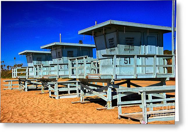 Summers Sentinels 2 Greeting Card by David Doucot