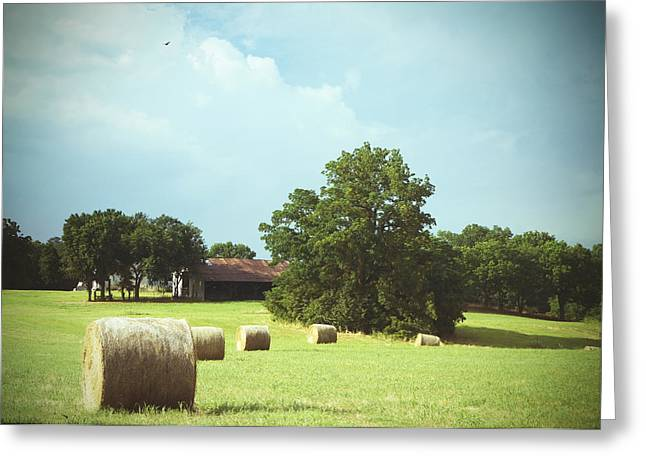 Summertime  Hay Bales  Greeting Card by Ann Powell