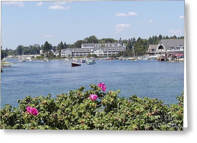Summertime In Maine Greeting Card