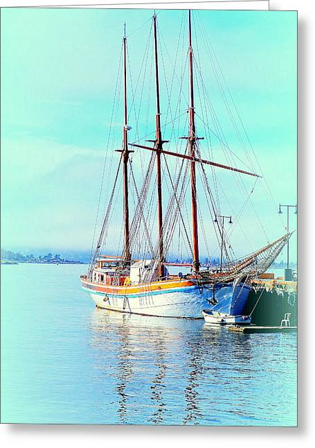 Summertime Will Be Soon And Then We Will Sail Away Again  Greeting Card
