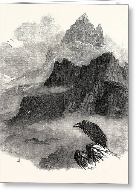 Summit Of The Pic Du Midi Dosseau Pyrenees 1854 Greeting Card by English School