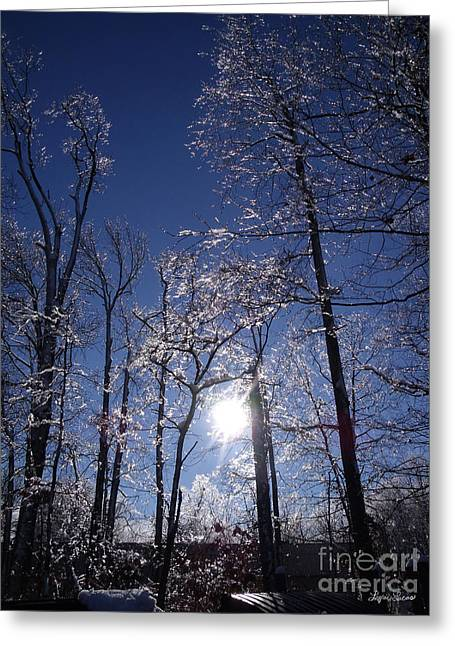 Sun And Ice Greeting Card by Lyric Lucas