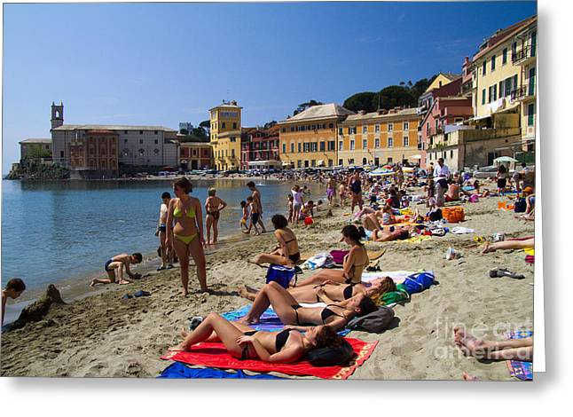 Historic Ship Greeting Cards - Sun bathers in Sestri Levante in the Italian Riviera in Liguria Italy Greeting Card by David Smith