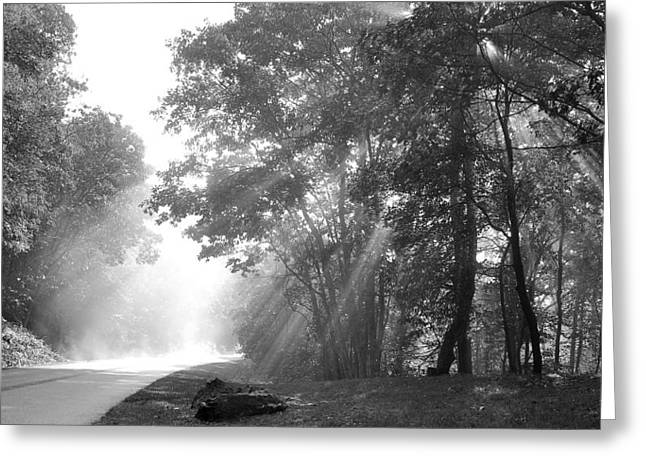 Sun Beams Greeting Card by Todd Hostetter