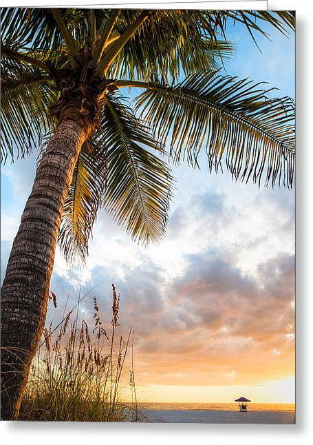 Sun Coast Beauty Greeting Card by Clay Townsend