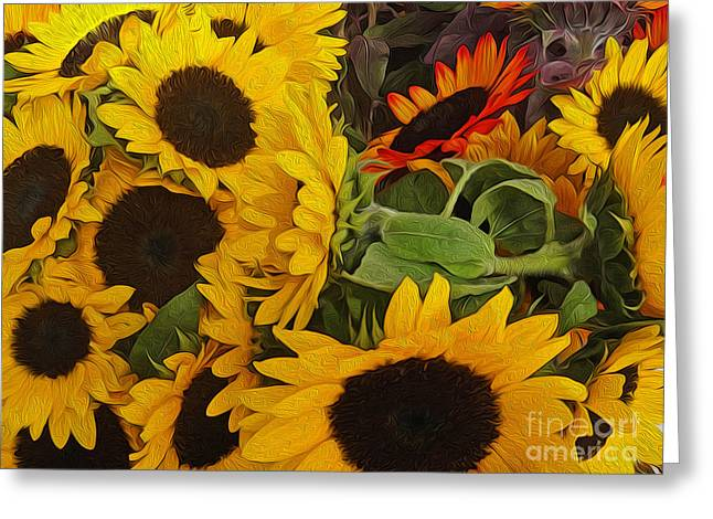 Sun Flowers Greeting Card by Gregory Dyer