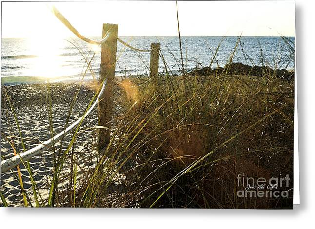 Sun Glared Grassy Beach Posts Greeting Card
