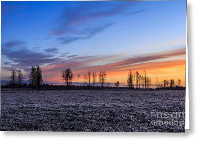 Sun Is Rising And Painting  Greeting Card