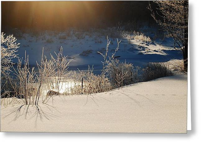 Greeting Card featuring the photograph Sun On Snow by Mim White