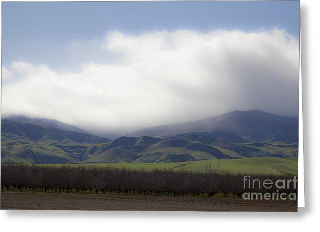 Sun On The South Tehachipis Greeting Card by Rich Collins