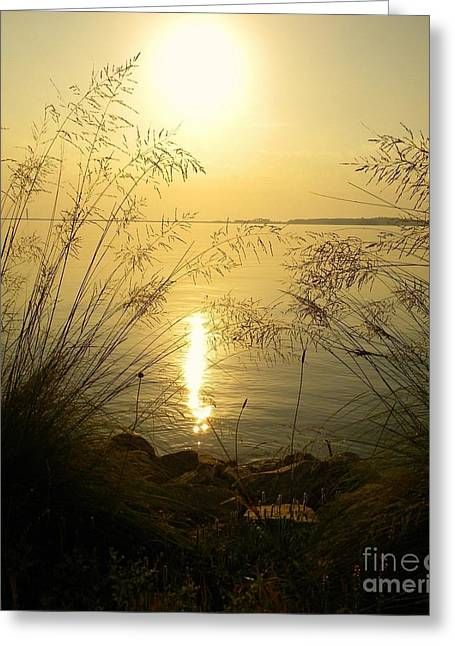 Sun Over Lake Murray Greeting Card