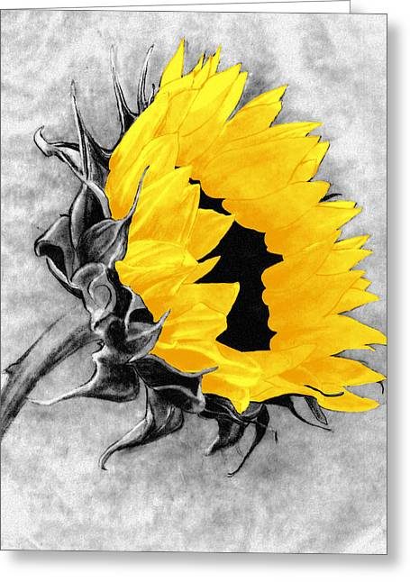 Sun Power Greeting Card