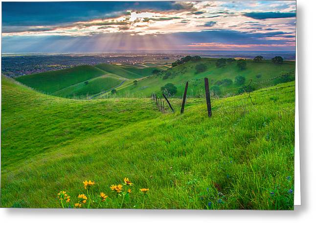 Sun Rays And Green Hillside Greeting Card by Marc Crumpler