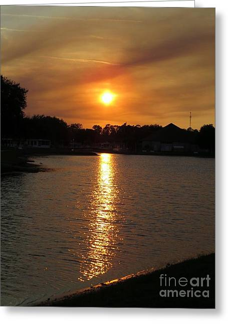 Sun Reflection Greeting Card by Zina Stromberg