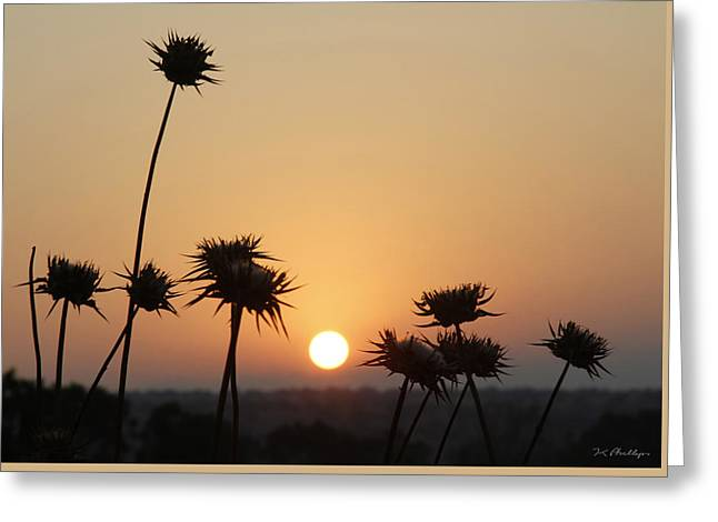 Sun Rise On Bethsaida Greeting Card by Jennifer Kathleen Phillips