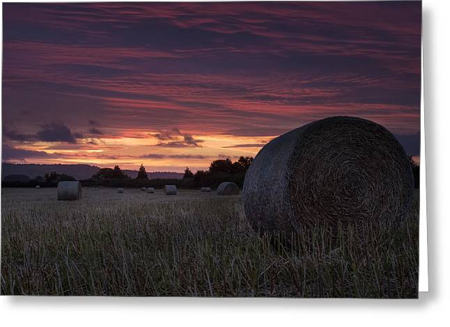 Sunrise Over The Harvest Greeting Card by Stewart Scott