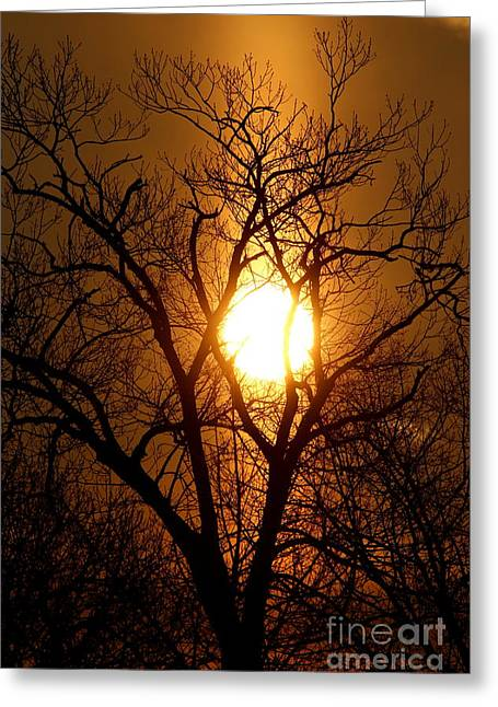 Sun Rise Sun Pillar Silhouette Greeting Card