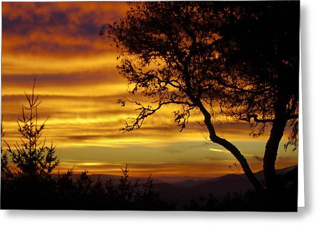 Sun Rising  Greeting Card by Alex King