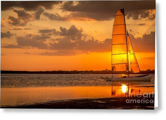 Sun Sail Greeting Card