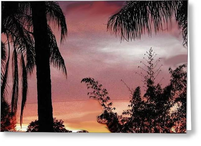 Sun Set Greeting Card by June Pressly