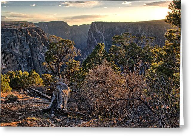 Sun Setting At Painted Wall Greeting Card by Eric Rundle
