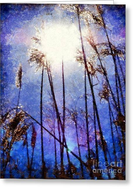 Sun Shine On The Marsh Grass Greeting Card by Janine Riley