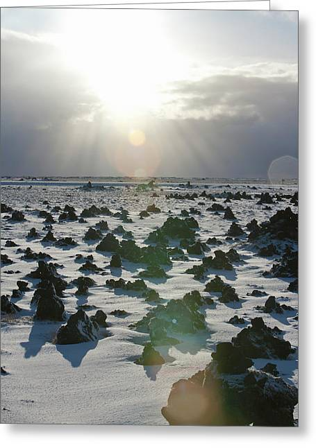 Sun Shining On A Field Of Lava Rocks Greeting Card