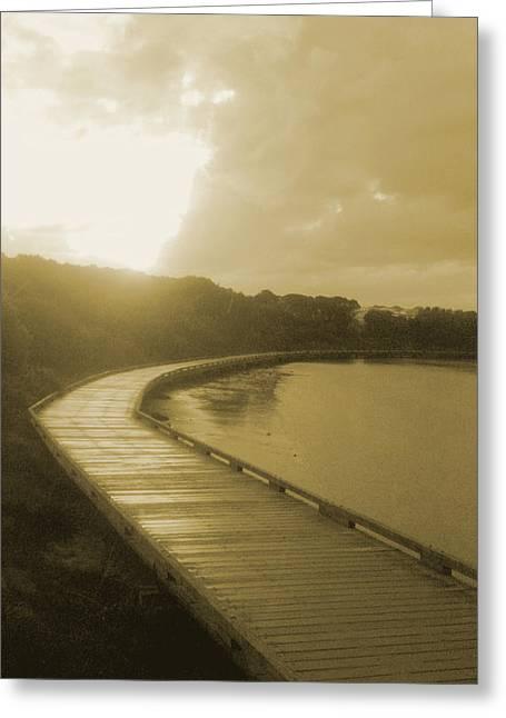 Sun Shower Greeting Card by Amanda Holmes Tzafrir