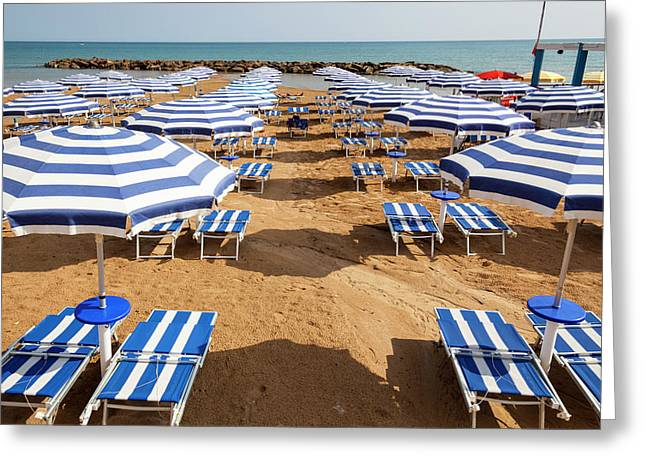 Sun Umbrellas And Sun Beds On A Beach Greeting Card by Mel Longhurst