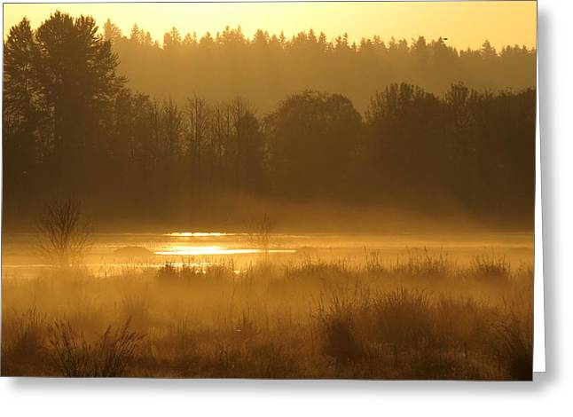 Sun Up At The Refuge Greeting Card