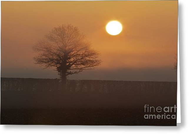 Greeting Card featuring the photograph Sun Up by Gary Bridger