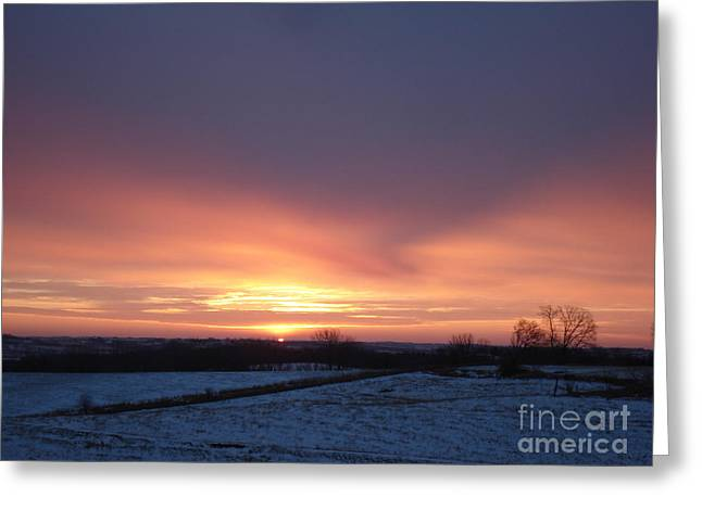 Sun Up In January Greeting Card by J L Zarek