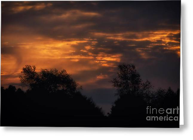 Sun Up Greeting Card by Thomas Woolworth