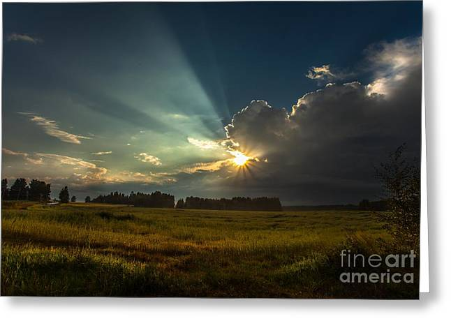 Greeting Card featuring the photograph Sunbeam by Rose-Maries Pictures
