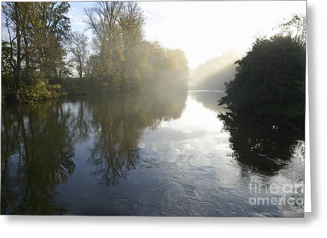 Sunbeams On Orb River By Morning Mist Greeting Card by Sami Sarkis