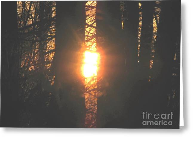Greeting Card featuring the photograph Sunblaze-2 by Melissa Stoudt