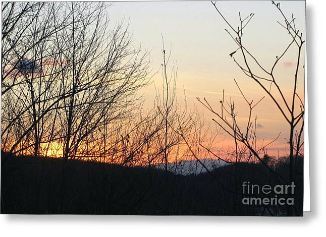 Greeting Card featuring the photograph Sunblaze-5 by Melissa Stoudt