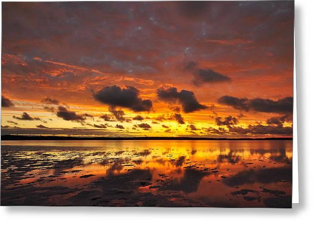 Sunburnt Sky Greeting Card by Sally Nevin