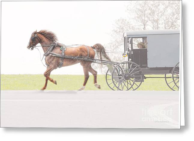 Greeting Card featuring the photograph Sunday Ride by Dyle   Warren
