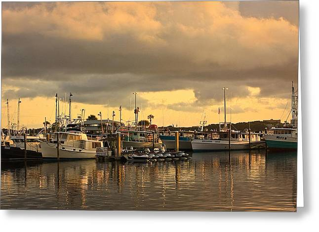 Sundown In The Bay... Greeting Card by Tammy Schneider