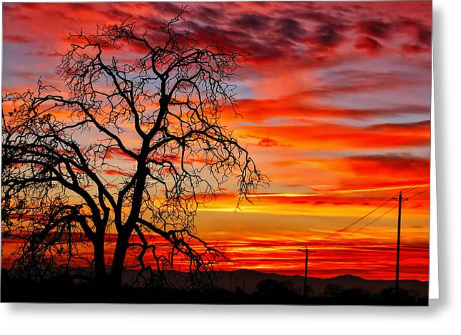 Sundown On Jeffcoat Greeting Card