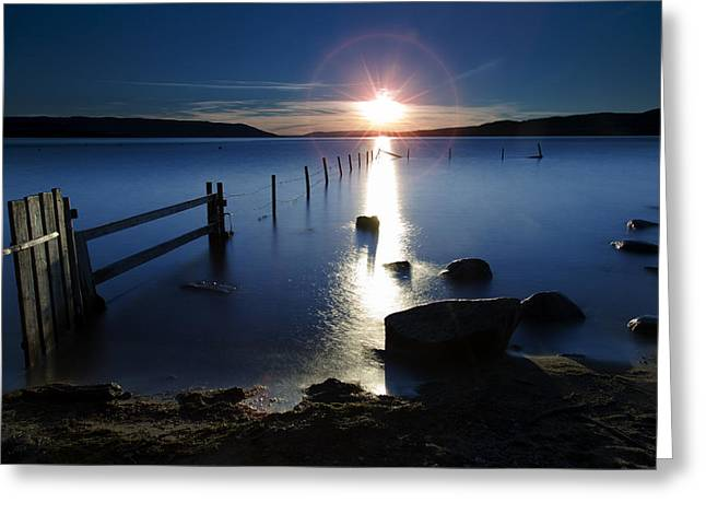 Sunflare Greeting Card by Thomas Berger