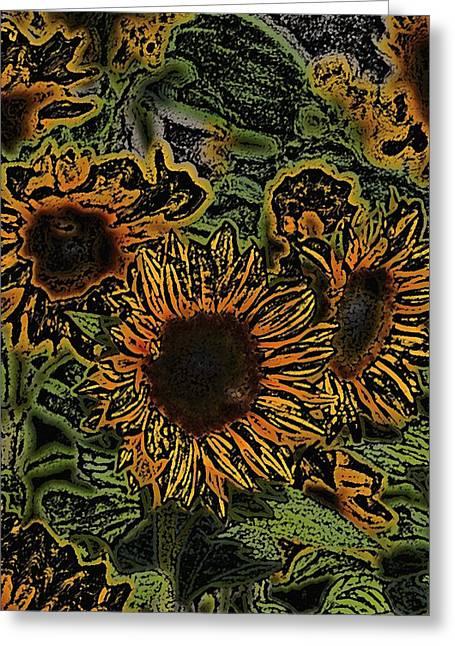 Sunflower 18 Greeting Card by Pamela Cooper