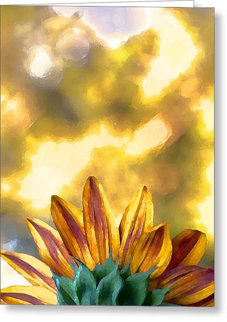 Sunflower 23 Greeting Card by Pamela Cooper