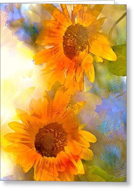 Sunflower 26 Greeting Card by Pamela Cooper
