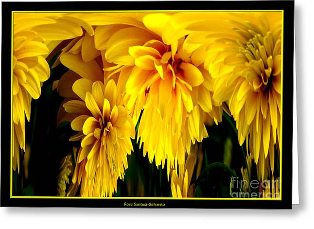 Sunflower Abstract 1 Greeting Card by Rose Santuci-Sofranko